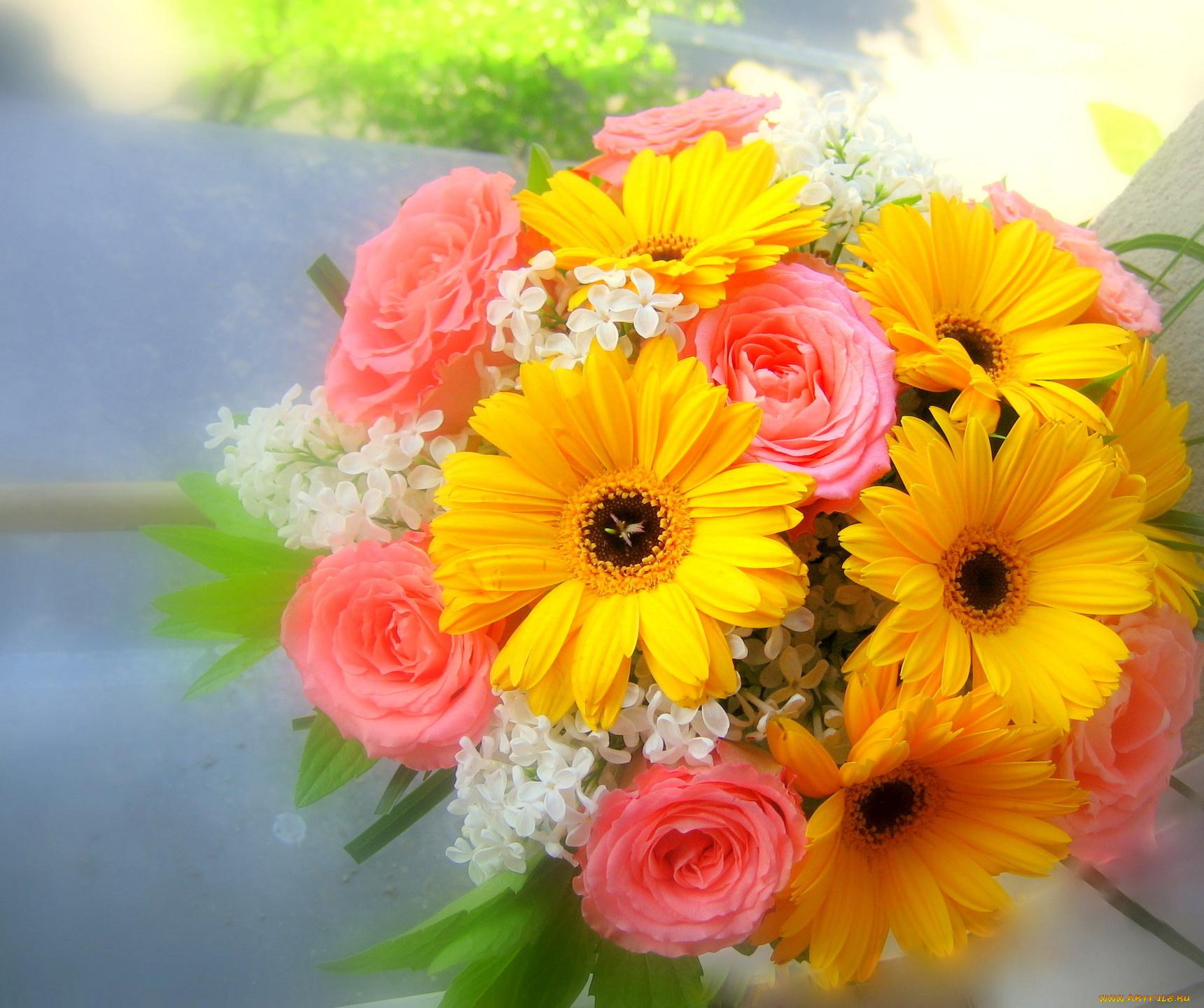 Цветы герберы открытка с днем рождения
