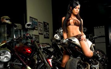 обоя мотоциклы, мото с девушкой, мотоцикл, фон, взгляд, девушка