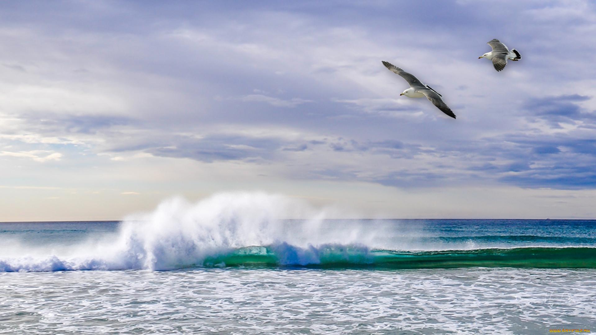 Море волны брызги скачать