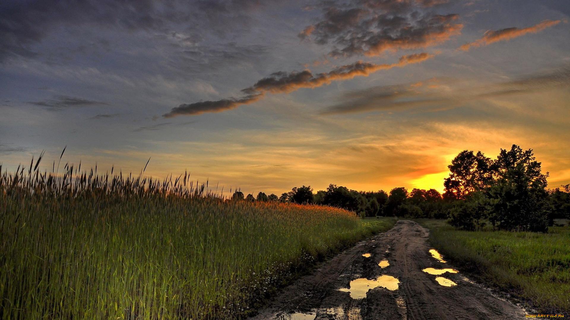 закат поле джипы небо  № 3800488 без смс