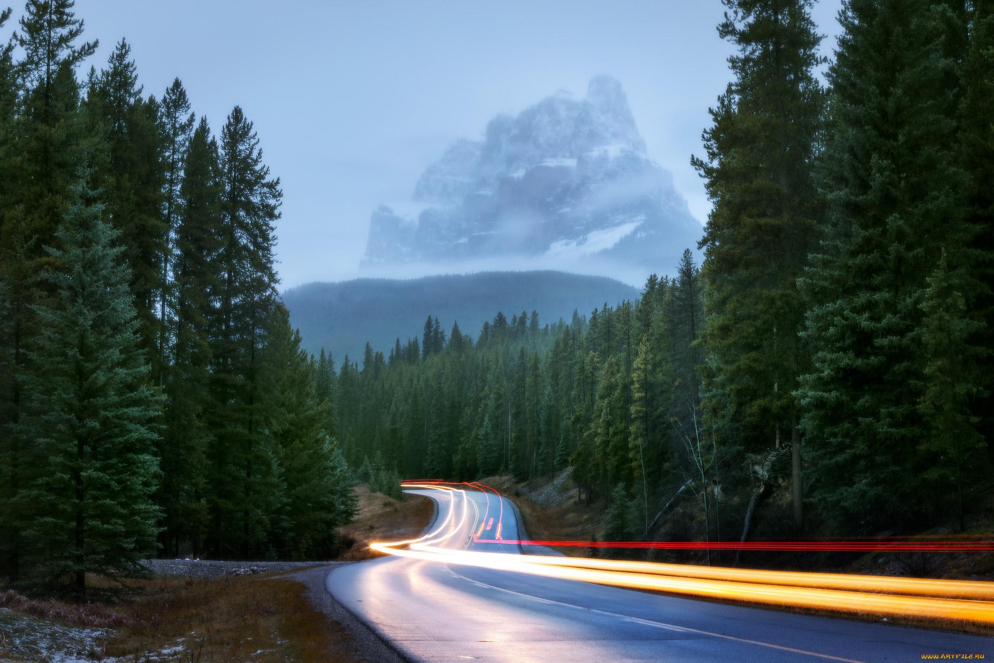 горы ночь лес дорога без смс