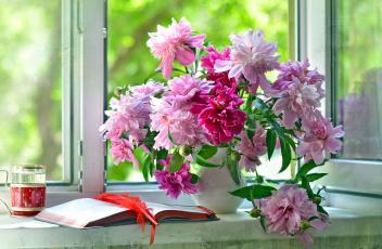 обоя цветы, пионы, букет, перо, тетрадь