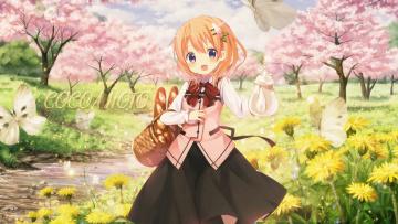 Картинка аниме gochuumon+wa+usagi+desu+ka фон взгляд девушка