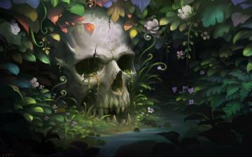 обоя фэнтези, нежить, человеческий, заросли, джунгли, зубы, череп, челюсть