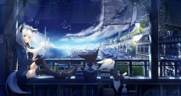 Картинка аниме животные +существа коты город девушка