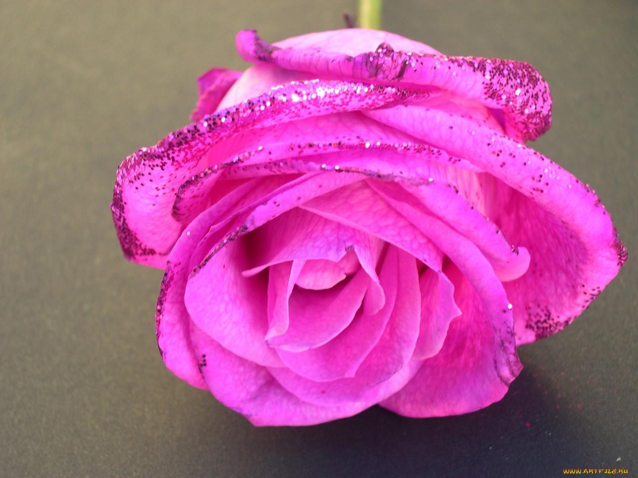 Открытки, картинки цветов с блестками