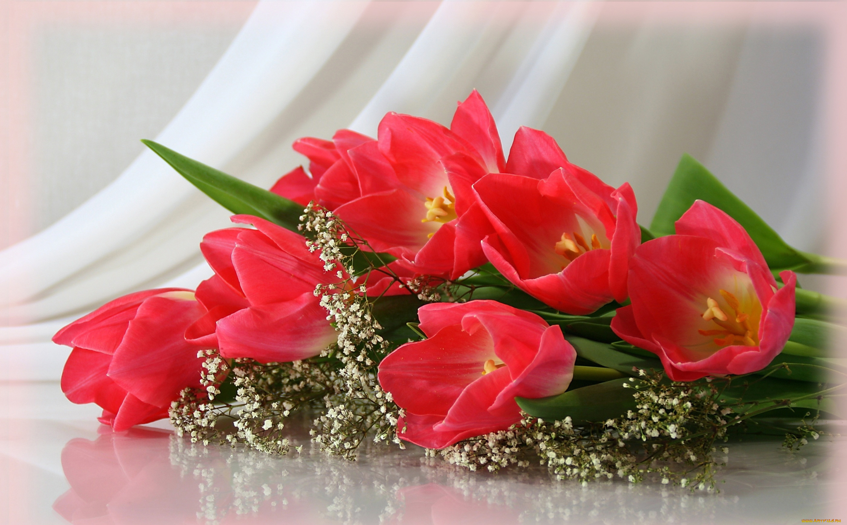 Цветы родной открытка, открытки марта