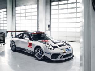 Картинка автомобили porsche 911 gt3 cup 2017г