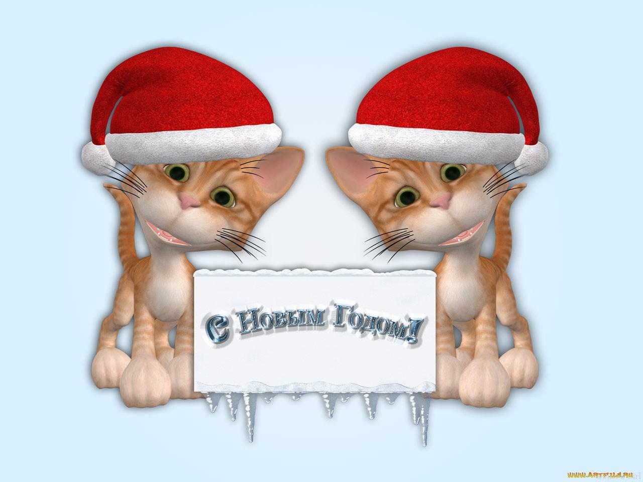 Надписью, прикольные открытки год кота