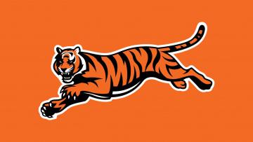 Картинка рисованные животные +тигры тигр