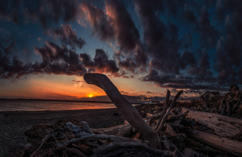 Картинка природа восходы закаты солнце горизонт океан пляж сучья тучт