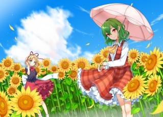 обоя аниме, touhou, kazami, yuuka, medicine, melancholy