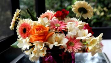 обоя цветы, букеты,  композиции, роза, фрезии, герберы