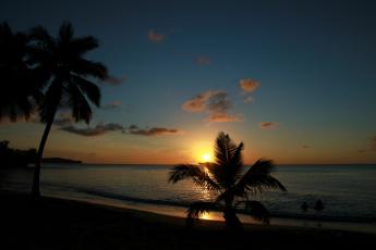 Картинка природа восходы закаты тропики