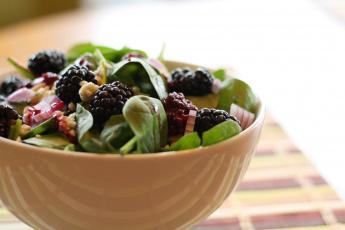 Картинка еда салаты +закуски салат зелень ежевика