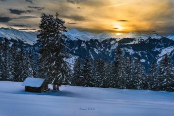 Картинка природа зима лес снег альпы горы