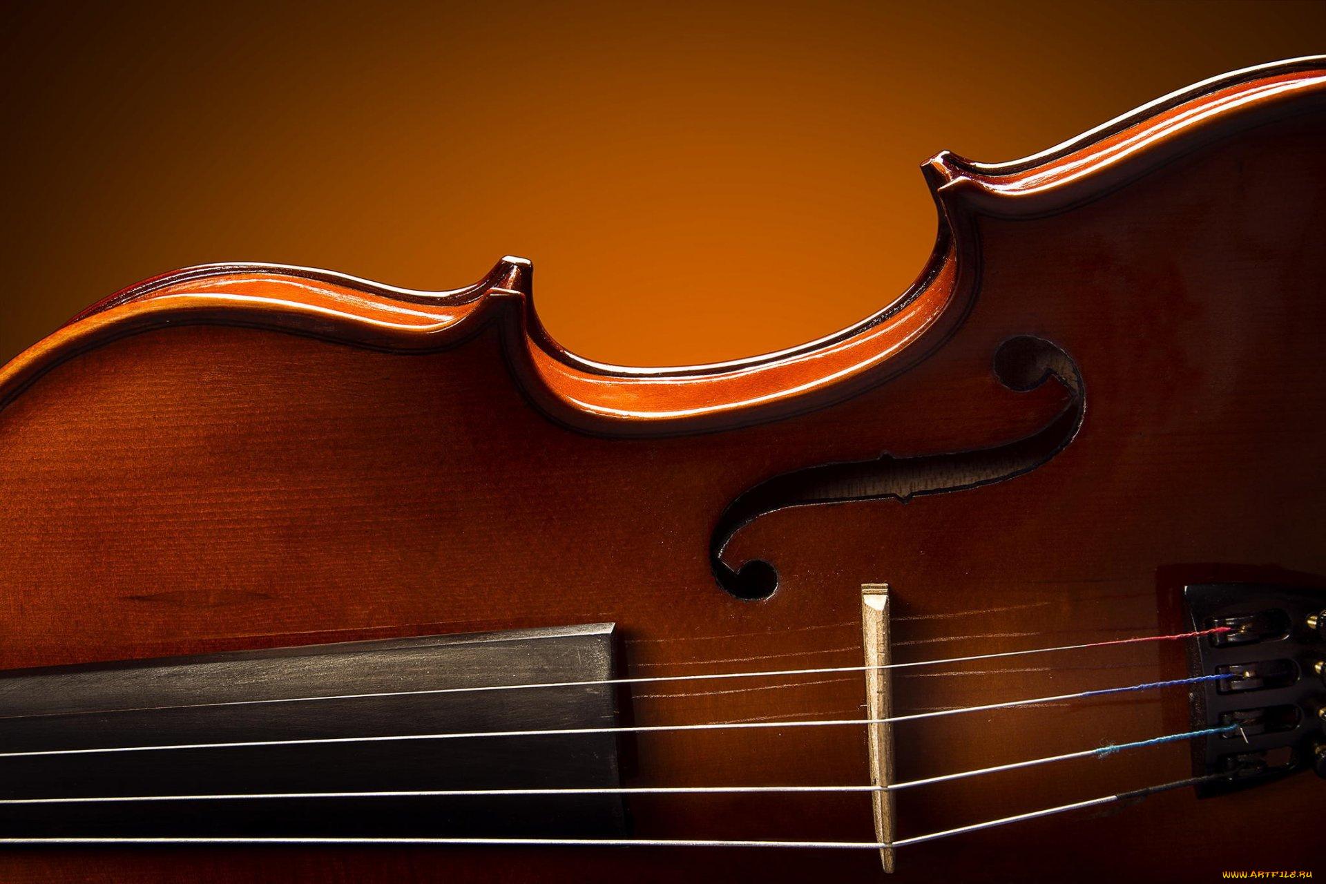 Картинка с муз инструментами