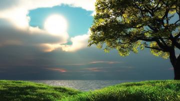 Картинка природа восходы закаты озеро деревья небо солнце трава облака