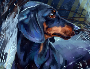 обоя рисованное, животные,  собаки, такса