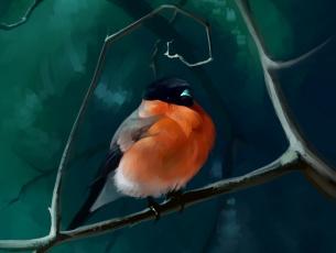 обоя рисованное, животные,  птицы, ветки, снегирь