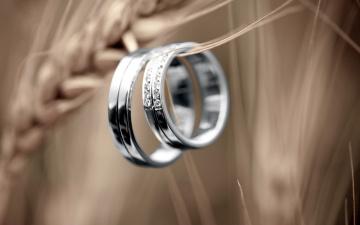 обоя разное, украшения,  аксессуары,  веера, обручальные, кольца
