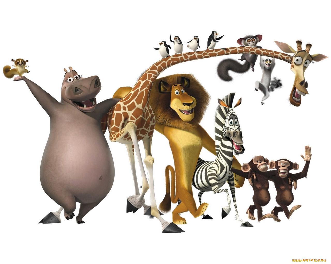 Картинки новым, из мультиков прикольные картинки животных