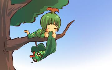 Картинка аниме pokemon дерево лист катерпи покемон арт девушка