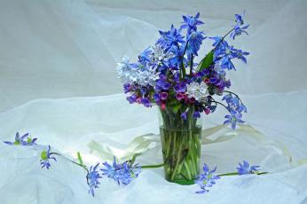 обоя цветы, букеты,  композиции, медуница, май, пушкинария, композиция, пролески, подснежники, красота, весна, первоцветы, букетик