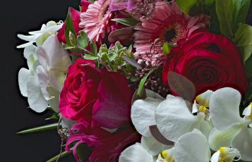 обоя цветы, букеты,  композиции, букет, розы, орхидея, гербера
