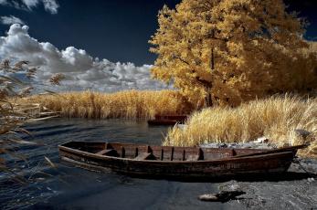 обоя корабли, лодки,  шлюпки, камыши, вода