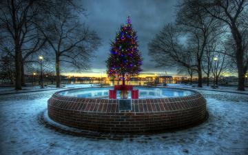 обоя праздничные, Ёлки, вечер, фонтан, елка, гирлянды