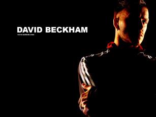 обоя мужчины, david, beckham