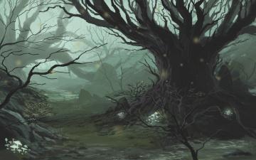 обоя фэнтези, пейзажи, лес, дерево, сказка, чаща, туман