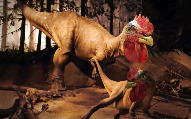 Обои картинки фото юмор и приколы, петух, динозавр, чудовище, дракон