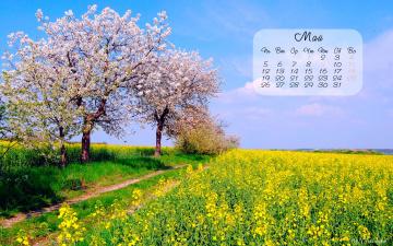 обоя календари, природа, весна