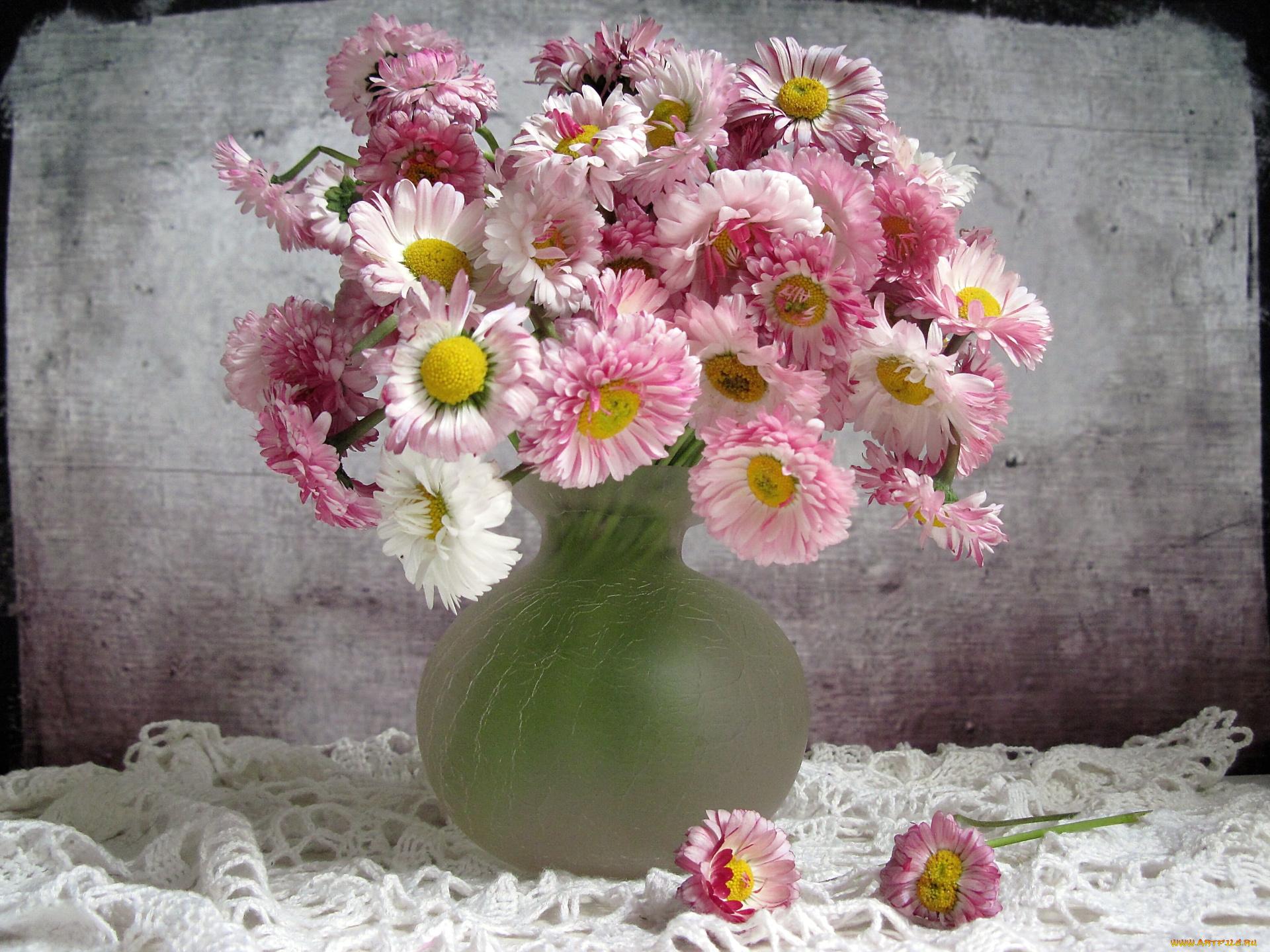 Днем, открытка с цветами маргаритками с днем рождения