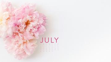 обоя календари, цветы, пионы