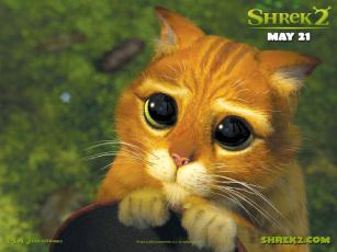обоя котик, мультфильмы, shrek, кот, из, шрека
