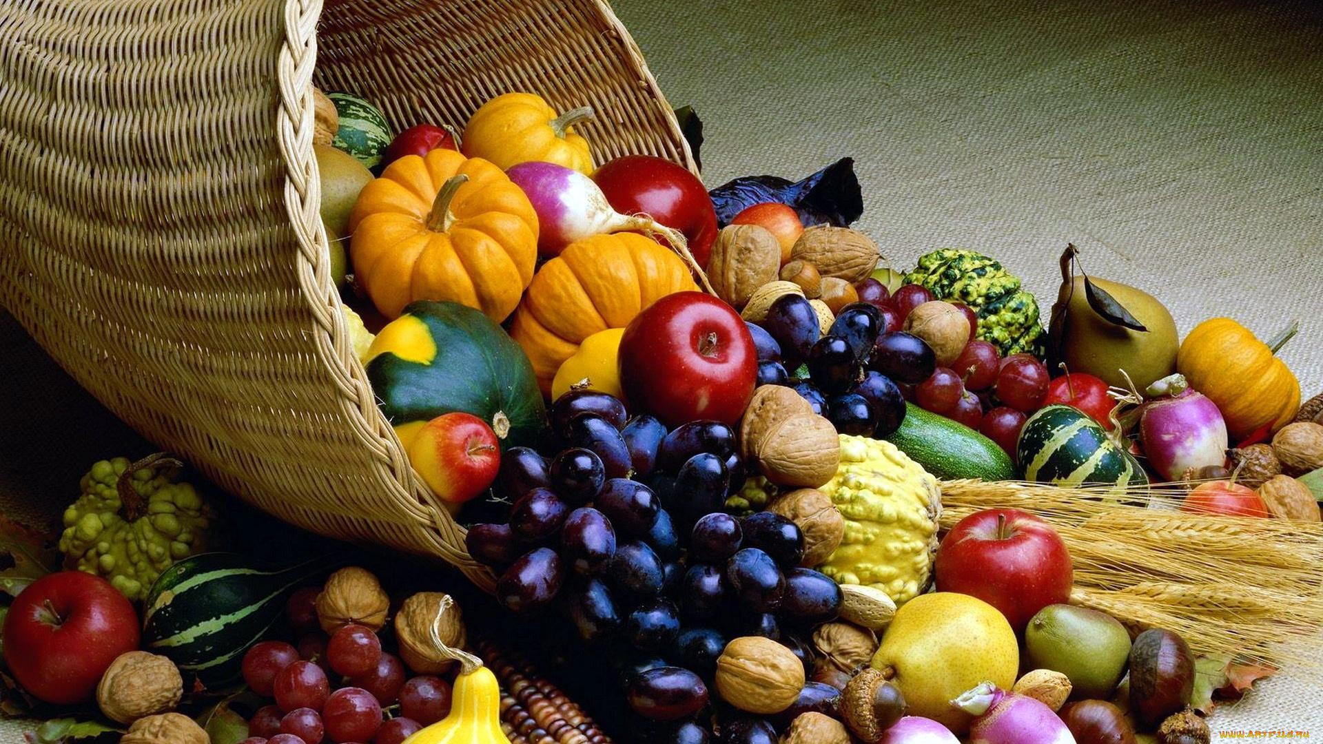 Днем, овощная открытка