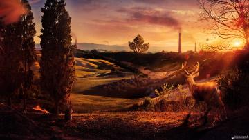 Картинка разное компьютерный дизайн холмы desktopography зяйц зарево олень трубы деревья закат