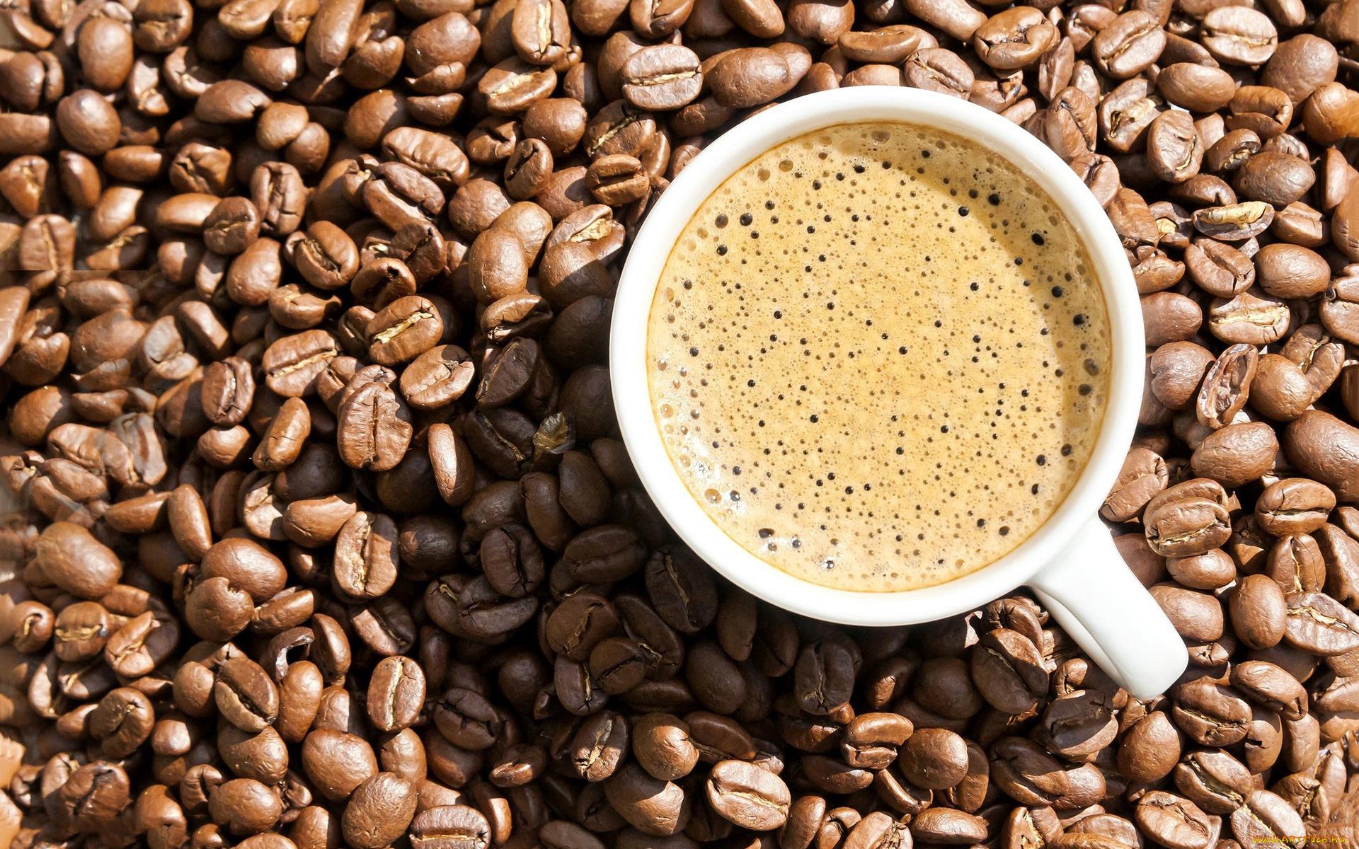 Кофе зерна  № 142044 бесплатно