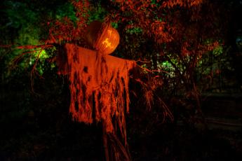 Картинка праздничные хэллоуин праздник призрак тыква