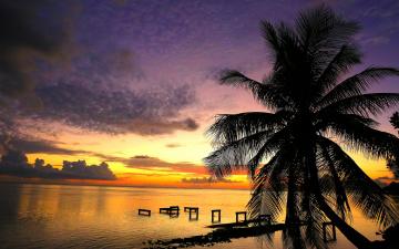 Картинка природа тропики курорт