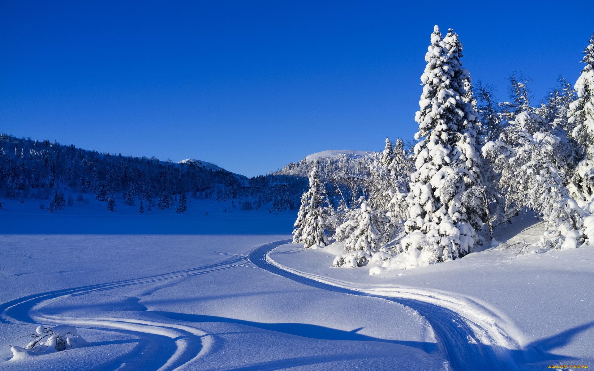 Картинки На Обои Рабочего Стола Зима