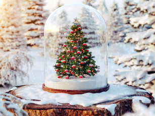 обоя праздничные, Ёлки, пенек, снег, елка