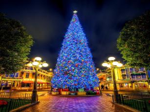 обоя праздничные, Ёлки, украшения, елка, площадь