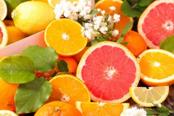 обоя еда, цитрусы, грейпфрут, апельсин, лимон