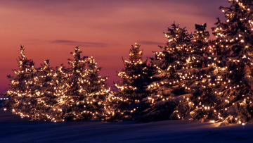 обоя праздничные, Ёлки, гирлянды, елки, снег