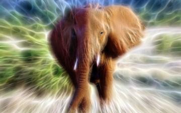 обоя разное, компьютерный дизайн, слон