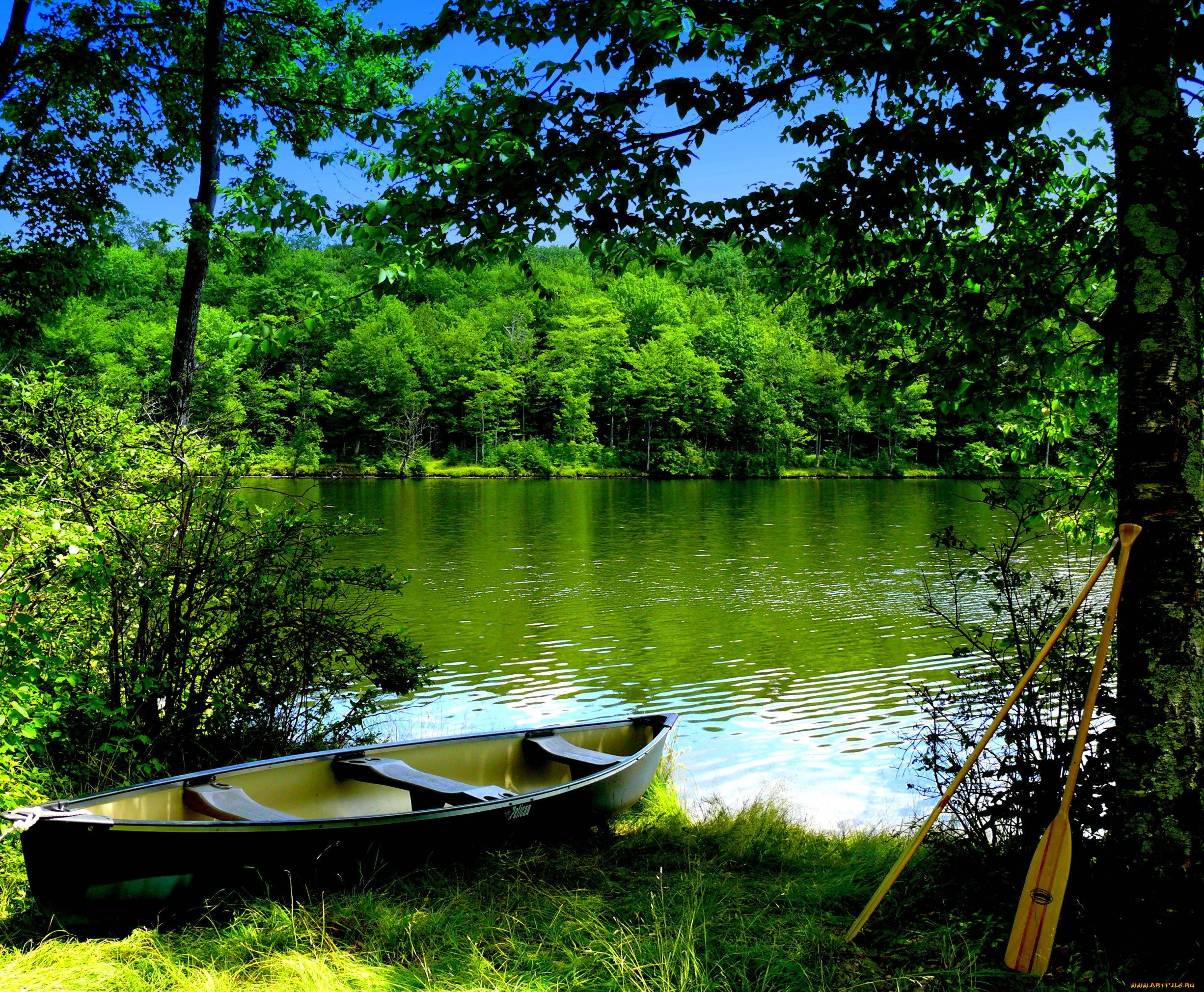 Берег озера в траве  № 2482688 без смс